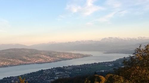 Zürich-järvi ja vuoret. Palkintoni.