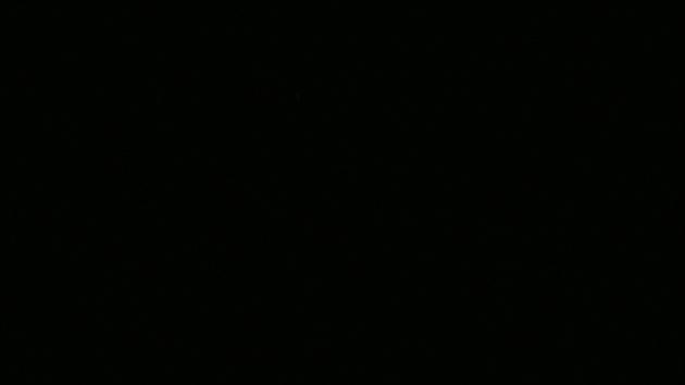 Pimeä metsä
