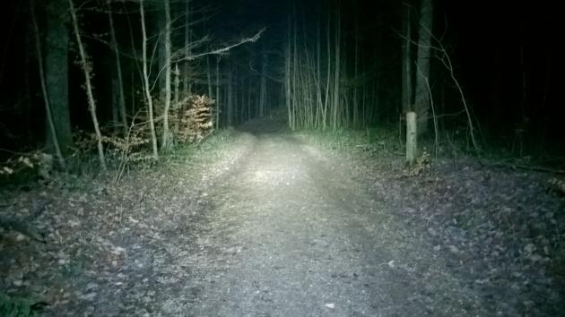 Pimeämetsä_hyvä valo